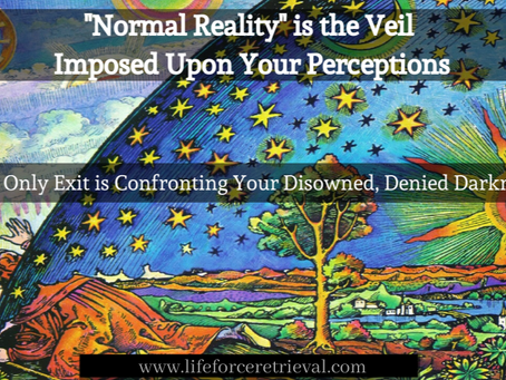 The Veil Upon Your Perceptions