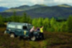 schatland natuursafari.jpg