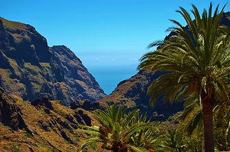 Tenerife view.jpg