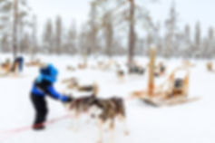 Lapland 4 kids 1.jpg