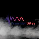 Transition Bites.png