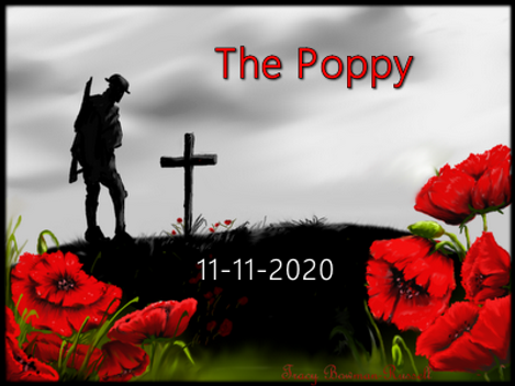 REmembrance flanders field_edited.png
