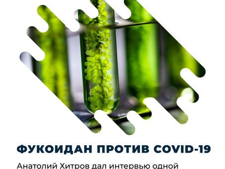 Фукоидан срещу COVID-19