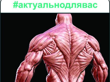 За мускулите