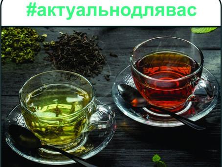 Чай: плюсове и минуси за здравето