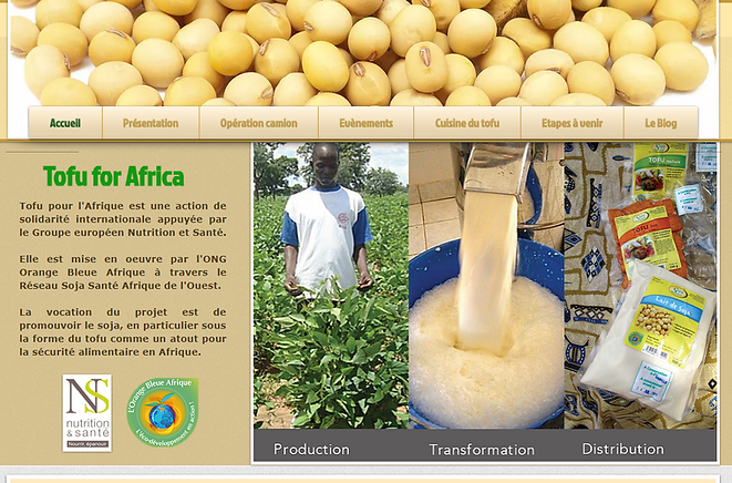 FireShot Capture 28 - tofu-for-africa -