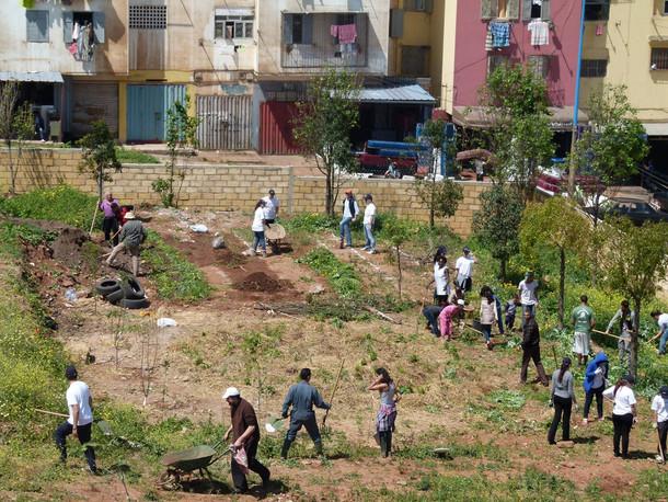 Jardin Casa 6.jpg