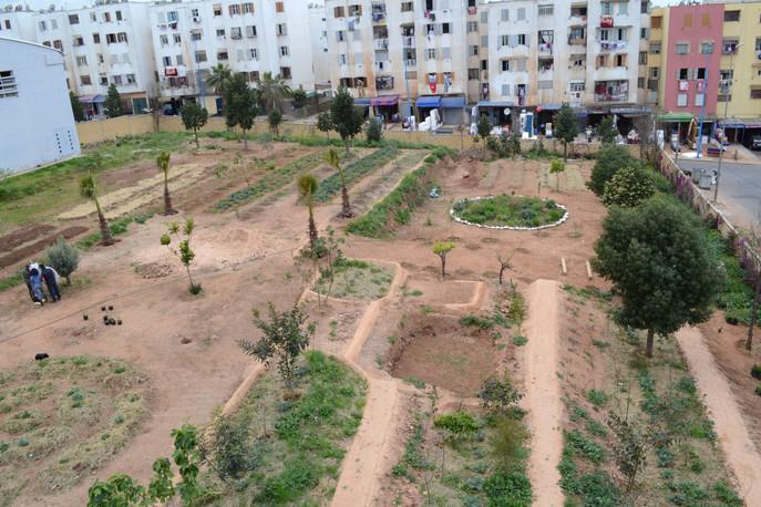 Jardin Casa 5.jpg