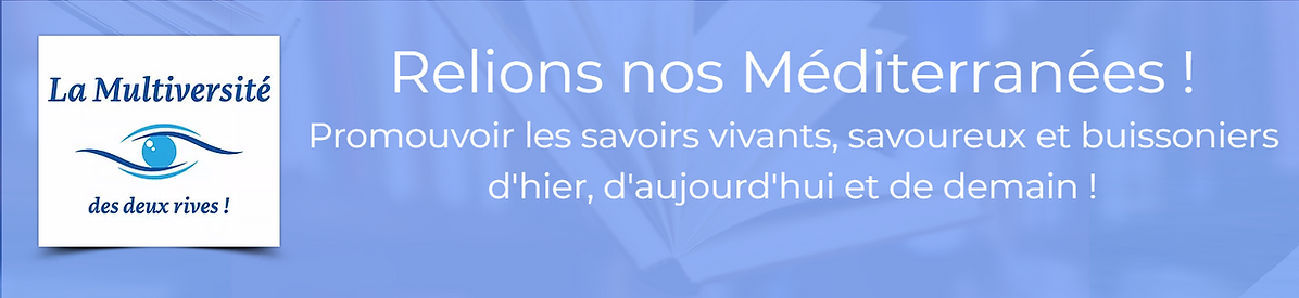 Accueil-Medmultiv.png