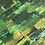 "Thumbnail: ARISE |  48X48"""