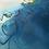 "Thumbnail: MEANDER |  20X24"""