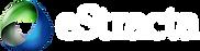 Logo-Home-eStracta-276x71px-novo_BOBIG_W