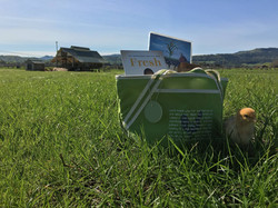 Gift Bags on Pasture