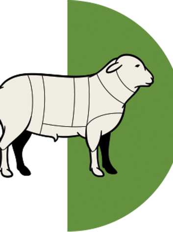 LAST of the HALF Lamb Shares 2017