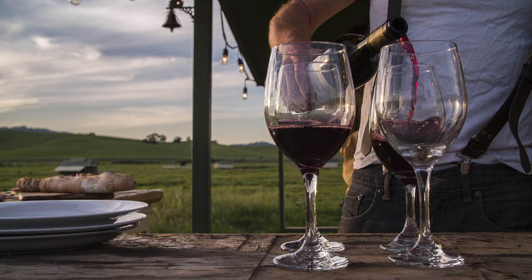 Wine on Pasture