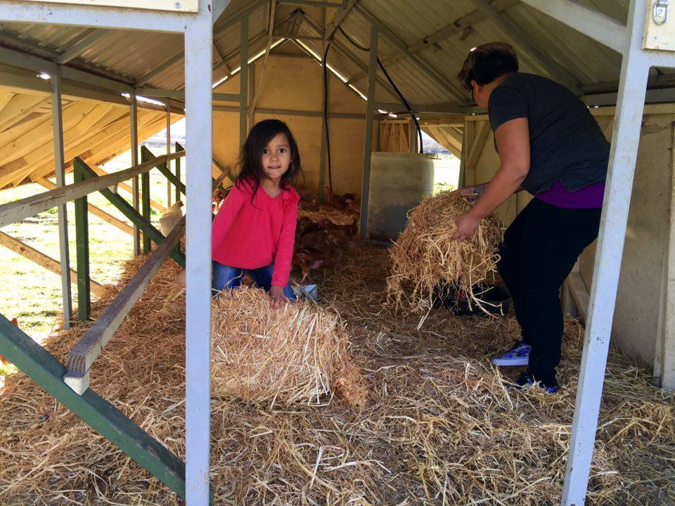Club Members Helping Us Farm