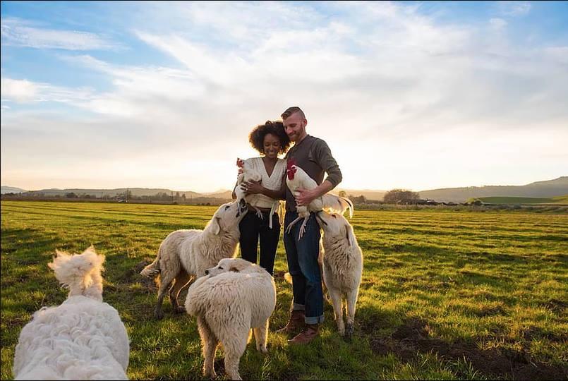 Lovers on Pasture