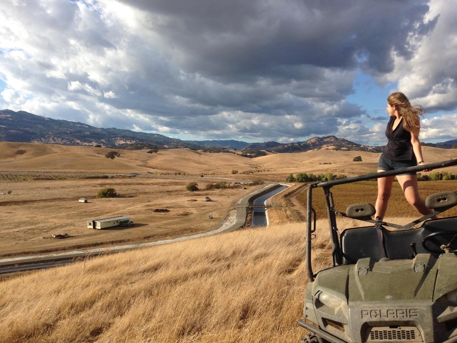 Overlooking the Farm