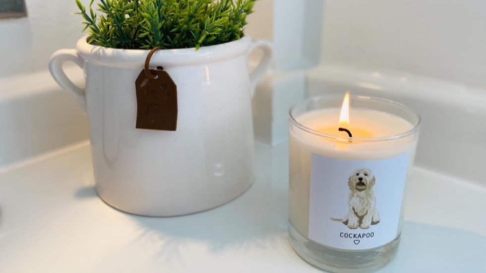 Candle Dog Breed Medium