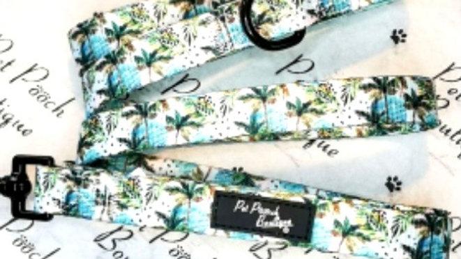 Palm Trees Lead 🌴