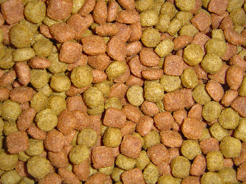 Do You Know What's in Your Pet's Food?