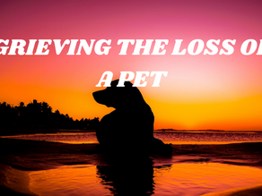 How Do You Cope With A Pet's Death?