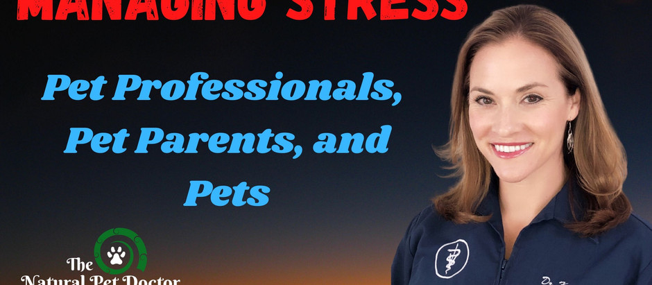 Managing Stress in the Pet Professional, Pet Parent and Pet while Treating Cancer