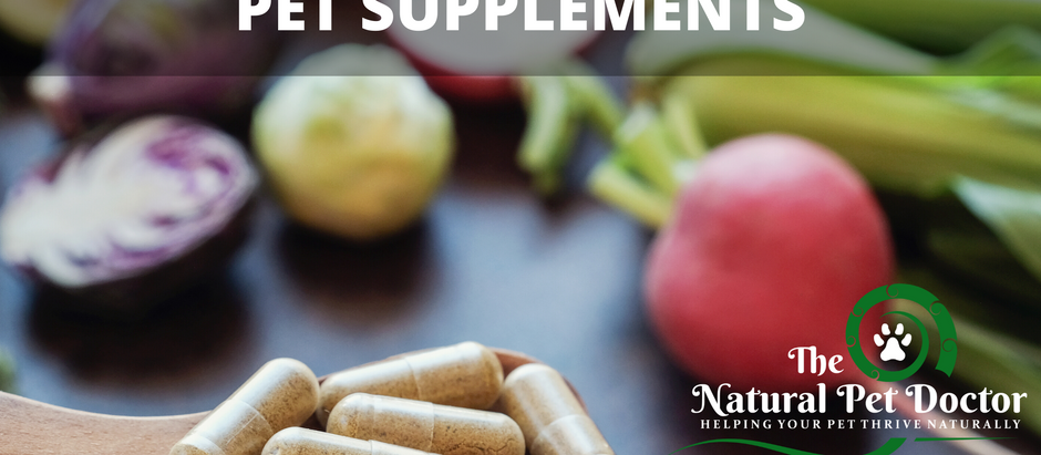 How to Choose the Best Pet Supplements Part 2