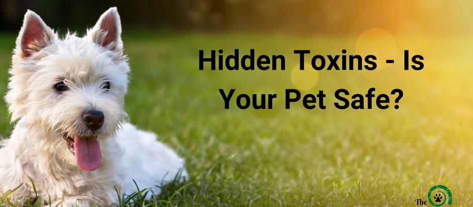 5 Hidden Toxins - Is Your Pet Safe?