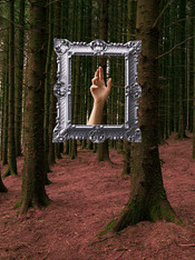 This is a colour portrait photograph of a woodland scene made up of tall pine trees with thin and long trucks. The floor of the forest is  an unusual colour red  which contrasts against the green hue of the tree trucks. In the top section of the image is a floating silver frame adorned with intricate patterns. In the picture frame is one hand raised upwards as it trying to touch this world and break free from it's frame cage.