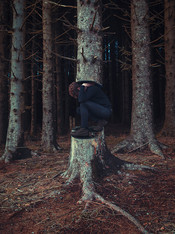This is a portrait colour photograph of a man dressed in black with auburn hair crouched on a tree stump. His arms are raised to his back as he holds a wide tree that spans upwards and out of the image above him. Around his is a scene of other tall pine trees with greeny - blue bark and a red floor covered in dead pine needles. The man's face is concealed by his arms but his pose suggests that he is struggling to hold the weight above him.