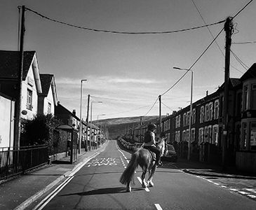 Horse Richards Street Maerdy March 2020.
