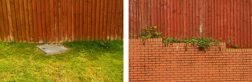 Left: This fist photo is of a red wooden fence with vertical panelling with green grass underneath. Just off centre is a light grey metal rectangle drain covering which is partially concealed by the fence. Right: This is a scene of a red fence in vertical panels meeting a red brick wall with prominent horizontal lines. From the place that they meet protrudes green brambles adorned with succulent black berries.