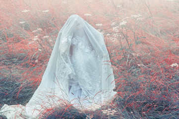 This is a landscape colour image of a meadow with slight fog creeping into the scene. The grass is an unusual colour of red and blue. In the centre left of the image is a figure sitting down on the ground dressed all in white. A white lacy cloak covers the figure's head and arms so that only the faint outline of a face can be seen. The face is looking upwards to the sky.