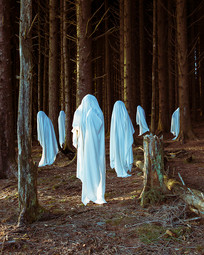 This is a portrait colour image of a forest of tall pine trees. Gentle sunlight hits small sections of the trees and ground that pierces through the forest. Six ghostly white figures appear to be floating in the air and wandering around the forest. None of which are interacting with each other, as thought hey are unaware of the scene or the other figure's presence. They too are bathed in golden light. The forest scene is in warm tones of brown which contrasts against the white figures that have a subtle blue hue. A decaying tree stump is in the right side of the photo. The forest graduates into darkness as the trees move into the background.