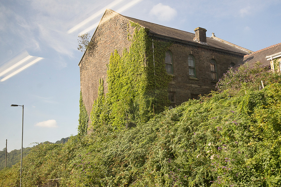 This is a photo of an old tall stone building that appears to be run dow with damaged windows. Green ferns, overgrown and ivy covers the one side of the building facing the camera and extends out to all of the bottom section of the image. A blue sky with slight whips of cloud sits behind the building. In the top left side of the image there is the reflected pattern of the train carriage lights which reminds us that the scene before us is a brief moment before the train continues with it's journey.