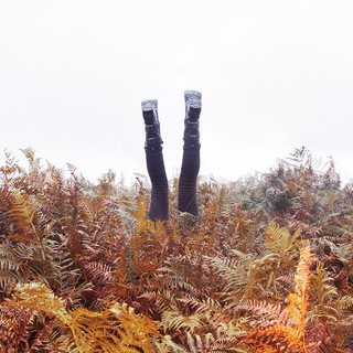 This is a square image with mountain ferns in the bottom half in colourful autumnal tones of oranges and reds. The sky above is white. From the middle of the image, two inside down legs wearing black jeans and black boots protrude from the ferns as though the model is doing a hand stand. You can not see any more of the model in the image.