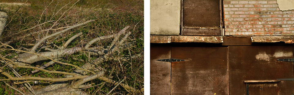 Left: This is a photo of long branches and tree trucks that have been cut down all piled up in a large mass.  Right: This is a photo comprised of textured brown walls of a building. Exposed brickwork, wooden panels and a boarded up window occupy the picture. Graffiti has been scratched into the wooden panels in the bottom section of the image that read 'APA.'