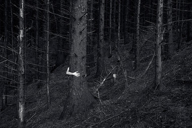 This is a black and white landscape image of a dark woodland area. Tall trees emerge from a sloped hillside. To the middle left section of the photograph stands a tall and wide tree. From the side of the tree a pale arm reaches around, clutching at the tree trunk. The body that this arm would be attached to is unseen and obscured from view by the tree.