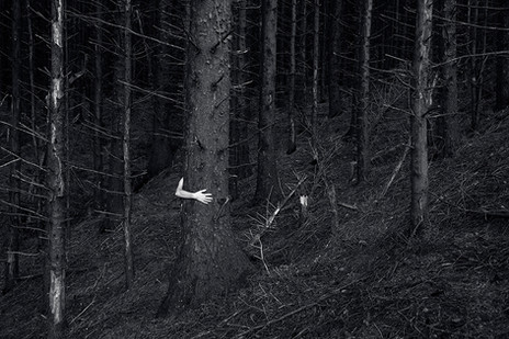 This is a black and white landscape image of a dark woodland area. Tall trees emerge from a sloped hillside. To the middle left section of the photograph stands a tall and wide tree. From the side of the tree a pale arm reaches around, clutching at the tree trunk. The body that this arm would be attached to is unseen and obscured from view by the wide tree truck.