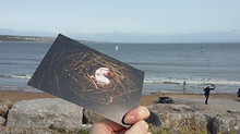 This is a photograph of the front of the postcard mentioned in the previous section of the webitse. The front has an image of a woman laying in a large brown nest of twigs and branches. The postcard is being held by a hand in front of a seaside view. There is a beach with a blue sea and small waves crashing on the shore.