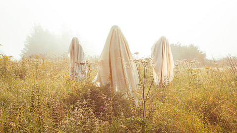 This is a colour landscape image of a misty field with golden tall grass and flowers. Beams of hazy light are illuminating the scene in a beautiful warm tone. In the image are three ghostly figures stood together in the centre. The middle figure is closest to the camera with the other two standing behind.