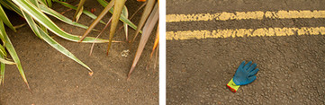 Left: This is a photo of a light brown floor with beautiful spike leaves in colours of green and yellow poking into the shot.  Right: This photo has complimentary colours in the yellow horizontal painted road markings on a roadside and a random working glove in colours of blue, yellow and red.