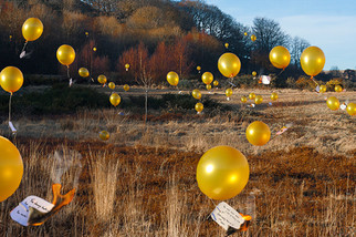 This is a colour landscape photograph of a sunny winter scene of grass, dead red ferns and naked trees. The image is littered with yellow balloons with paper messages tied to them with string. The balloons float around the image, each with secret words that we cannot quite read as they floatf rom view. Several are on fire, with smoke rising from the burning paper.