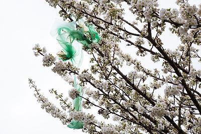 Plastic Blossom 1.jpg