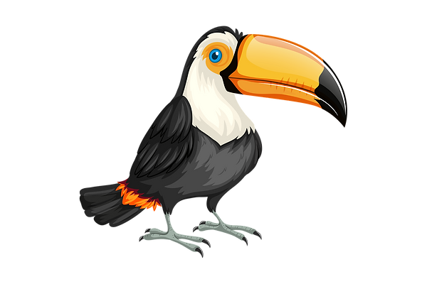 toucan-3414686_1920.png