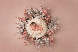 ©J.Marie_Photography_Fayetteville,_NC_Newborn_Photographer-2
