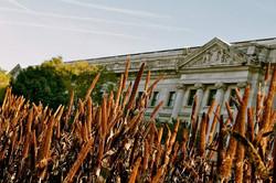 The USDA in Washington D.C.