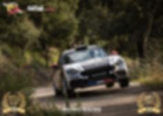 Poster-Abarth-124-rally-Var.jpg
