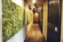 moss walls, hair salon, hair salon granite bay, barn doors, diy